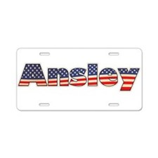 American Ansley Aluminum License Plate
