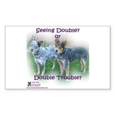 Double Trouble ACDs Decal