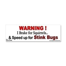 I Speed Up for Stink Bugs! Car Magnet 10 x 3