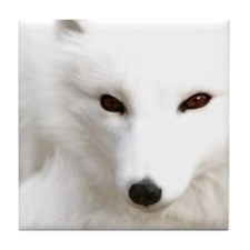 White Polar Fox Tile Coaster