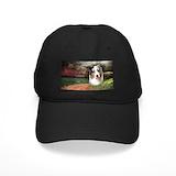 Australian shepherd Black Hat