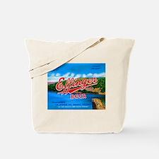 Wisconsin Beer Label 14 Tote Bag