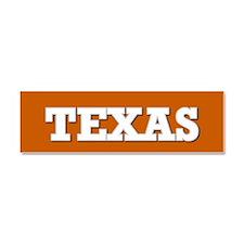 Texas Car Magnet 10 x 3