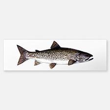 Trout Fish Bumper Bumper Sticker