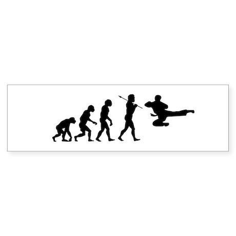 Evolve - Flying Kick Sticker (Bumper)