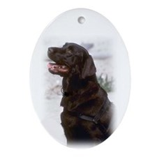 Labrador Ornament (Oval)