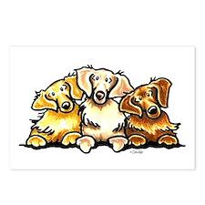 3 Golden Retrievers Postcards (Package of 8)
