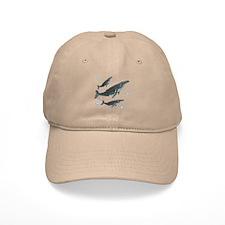 Humpback Whale Baseball Cap
