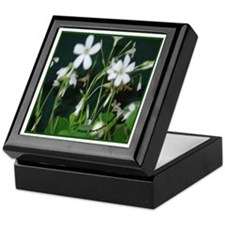 Blooming Shamrocks Keepsake Box