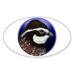 Bobwhite Quail 2 Sticker (Oval)