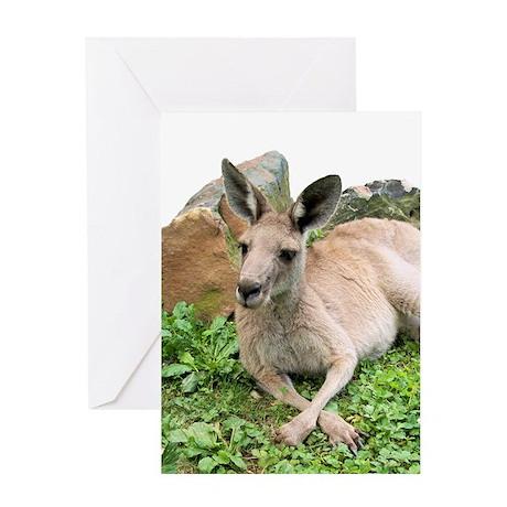 Grey Kangaroo Greeting Card