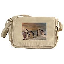 Penguins from Antarctica Messenger Bag