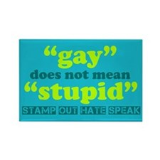 Gay Does Not Mean Stupid Rectangle Magnet