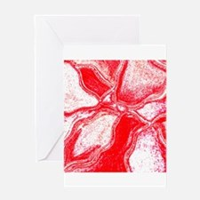 The Love Collection Greeting Card