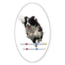 Bounce Jump Oval Decal
