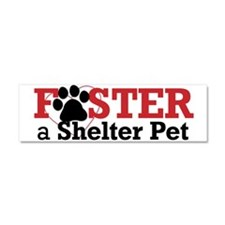 Foster a Shelter Pet Car Magnet 10 x 3