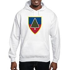 1st Squadron 91st Infantry Regiment Hoodie