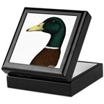Mallard Drake Head Keepsake Box