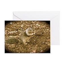 Big Cheeks Squirrel Card