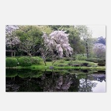 Cherry Blossoms Tree Postcards (Package of 8)