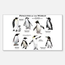 Penguins of the World Decal