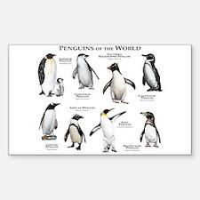 Penguins of the World Sticker (Rectangle)
