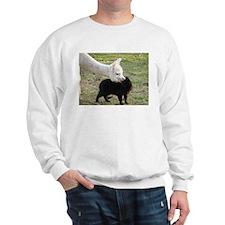 LET'S BE FRIENDS Sweatshirt