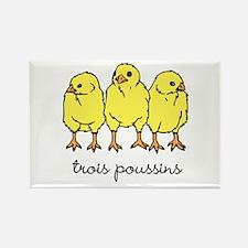 Trois Poussins (3 chicks) Rectangle Magnet