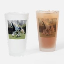 Gypsy Horse Mare Drinking Glass