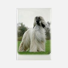 Afghan Hound 9Y247D-025 Rectangle Magnet