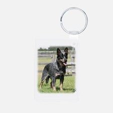 Australian Cattle Dog 9Y749D-017 Keychains