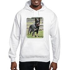 Australian Cattle Dog 9Y749D-017 Hoodie