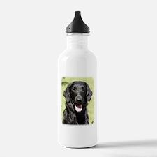 Flat Coated Retriever 9Y040D-040 Water Bottle