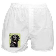 Flat Coated Retriever 9Y040D-040 Boxer Shorts