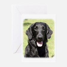 Flat Coated Retriever 9Y040D-040 Greeting Cards (P