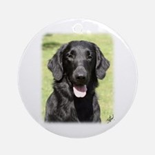 Flat Coated Retriever 9Y040D-040 Ornament (Round)