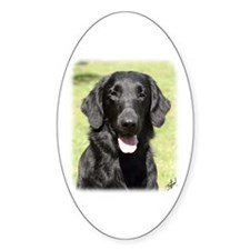 Flat Coated Retriever 9Y040D-040 Decal