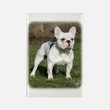 French Bulldog 9Y202D-134 Rectangle Magnet