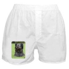 Skye Terrier 9Y766D-031 Boxer Shorts