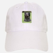 Skye Terrier 9Y766D-031 Baseball Baseball Cap