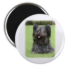Skye Terrier 9Y766D-031 Magnet
