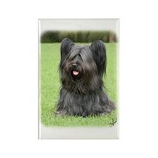 Skye Terrier 9Y766D-031 Rectangle Magnet (100 pack