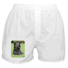 Skye Terrier 9Y766D-039 Boxer Shorts