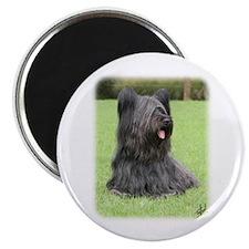 Skye Terrier 9Y766D-039 Magnet