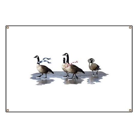 Cool Geese Banner