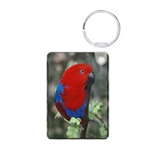 Eclectus Parrot Keychains