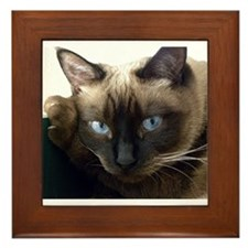 Unique Siamese cat Framed Tile