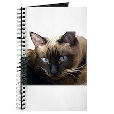 Cute Siamese cat Journal