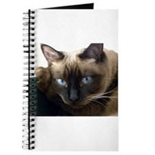 Cute Siamese cats Journal
