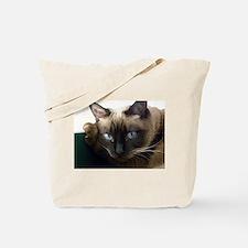 Funny Siamese cats Tote Bag